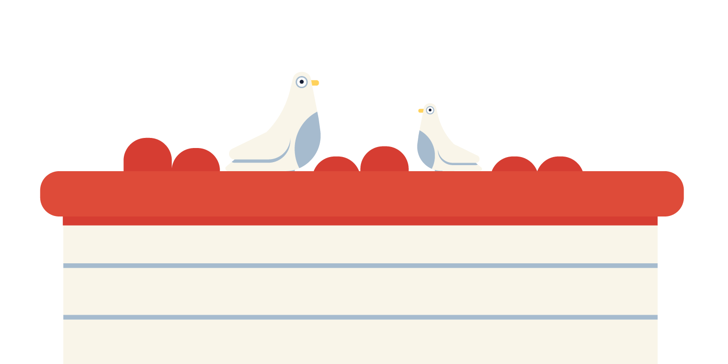 birds sitting on a roof